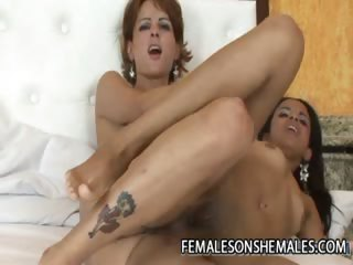 Gabryelly Dumont - Redhead Shemale Screwing A Correct Pussy